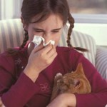 I Am Allergic To Cats But Not Dogs, Why? Dr Hecht Answers
