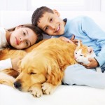 make your home pet allergy free
